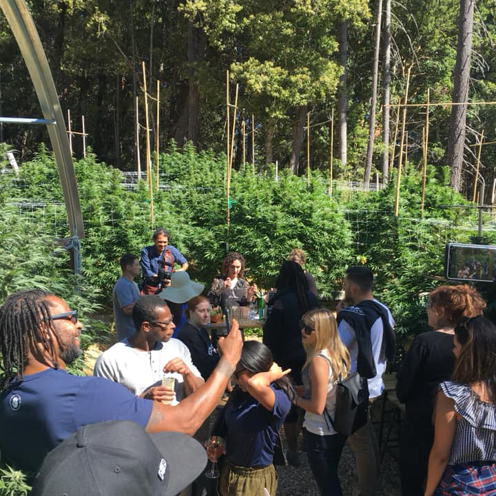 Green Market Report Visits Sunrise Mountain