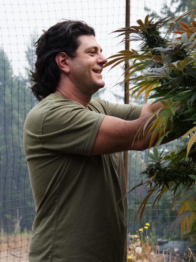Dave Farming